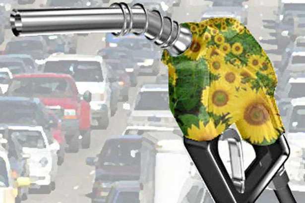 Cosa sono i biocarburanti di seconda generazione